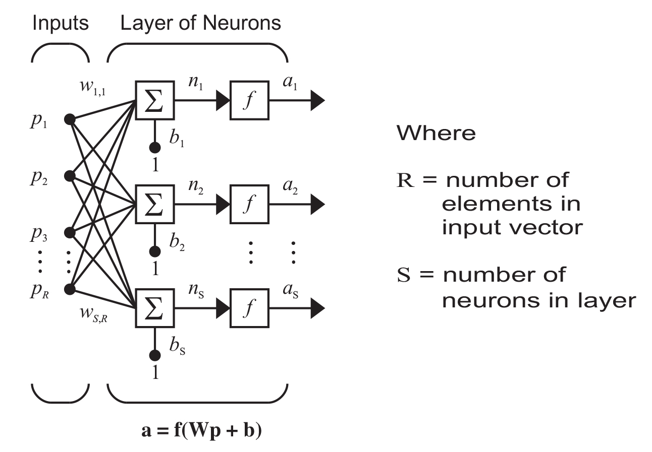 diagram of weights and biases in a neural network